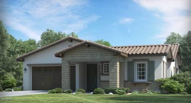 4942 N 207TH Avenue, Buckeye, AZ 85396 (MLS #6030077) :: Arizona Home Group
