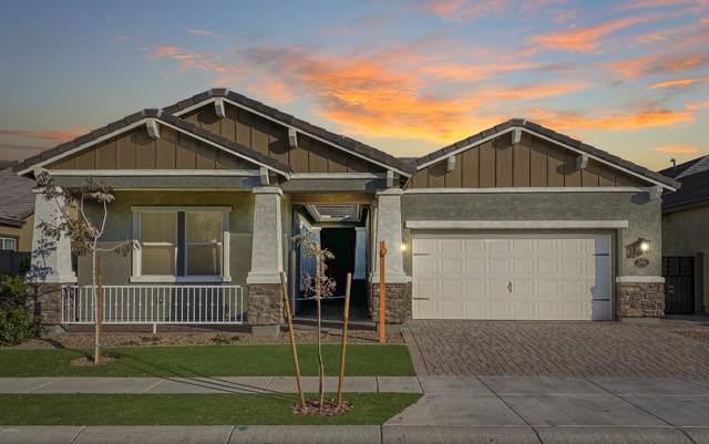 10730 E Meseto Avenue, Mesa, AZ 85209 (MLS #6030233) :: Brett Tanner Home Selling Team