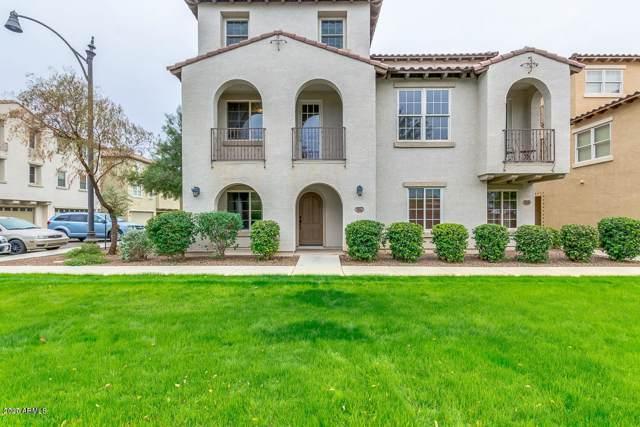 3652 E Horace Drive, Gilbert, AZ 85296 (MLS #6030279) :: Brett Tanner Home Selling Team