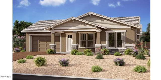 22585 E Camacho Road, Queen Creek, AZ 85142 (MLS #6030304) :: Revelation Real Estate