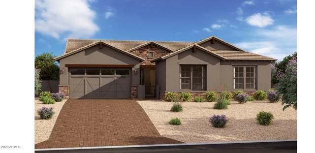22622 E Russet Road, Queen Creek, AZ 85142 (MLS #6030319) :: Revelation Real Estate