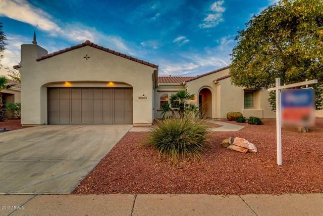 12904 W La Vina Drive, Sun City West, AZ 85375 (MLS #6030329) :: Howe Realty