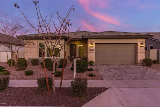 12653 N 143rd Lane, Surprise, AZ 85379 (MLS #6030454) :: Kortright Group - West USA Realty