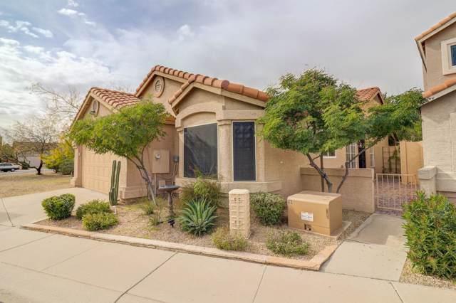 16024 N 3RD Avenue, Phoenix, AZ 85023 (MLS #6030542) :: Brett Tanner Home Selling Team