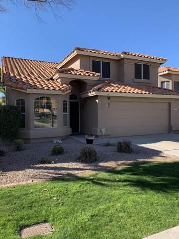 6513 E Snowdon Street, Mesa, AZ 85215 (MLS #6031133) :: The Property Partners at eXp Realty