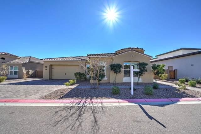 9847 E June Street, Mesa, AZ 85207 (MLS #6031879) :: CC & Co. Real Estate Team