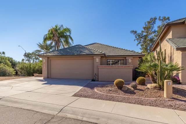 7507 W Sequoia Drive, Glendale, AZ 85308 (MLS #6032401) :: Conway Real Estate