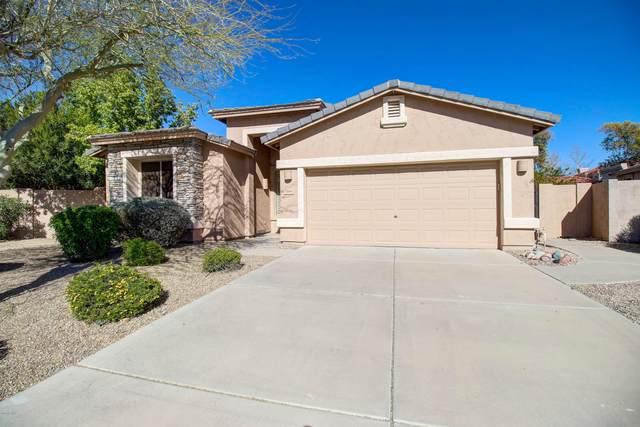 6180 W Oraibi Drive, Glendale, AZ 85308 (MLS #6032545) :: Conway Real Estate