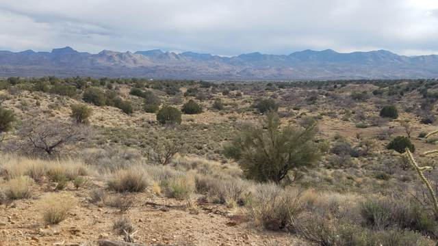 Lot 74 -75 Powerline Road, Kingman, AZ 86401 (MLS #6032577) :: Keller Williams Realty Phoenix