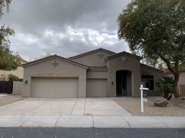 733 E Gemini Place, Chandler, AZ 85249 (MLS #6032612) :: The Everest Team at eXp Realty