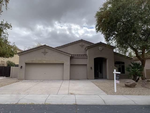 733 E Gemini Place, Chandler, AZ 85249 (MLS #6032612) :: Howe Realty