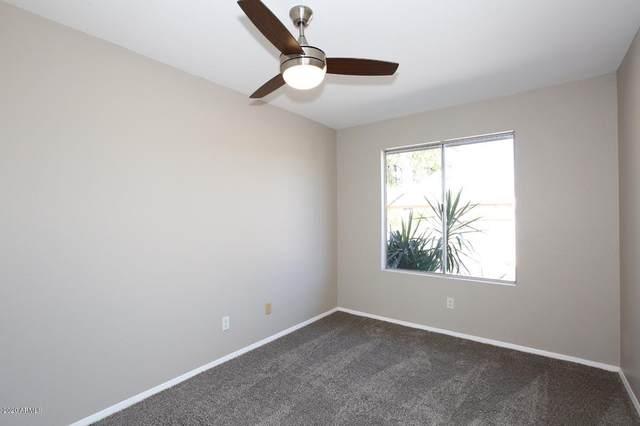1517 W Comstock Drive, Chandler, AZ 85224 (MLS #6032821) :: The W Group