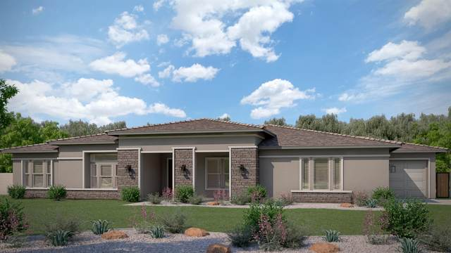 13037 W Citrus Court, Litchfield Park, AZ 85340 (MLS #6032912) :: Lifestyle Partners Team