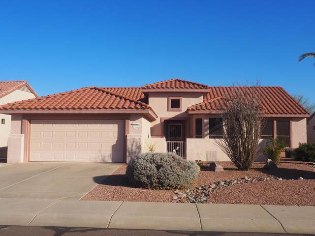 16000 W Wildflower Drive, Surprise, AZ 85374 (MLS #6033243) :: Nate Martinez Team