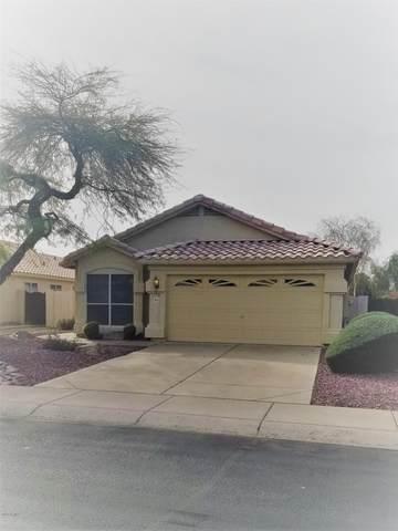 6213 W Blackhawk Drive, Glendale, AZ 85308 (MLS #6033340) :: Conway Real Estate