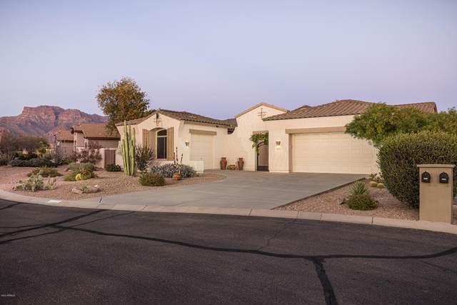 4207 S Alamandas Way, Gold Canyon, AZ 85118 (MLS #6033469) :: Brett Tanner Home Selling Team