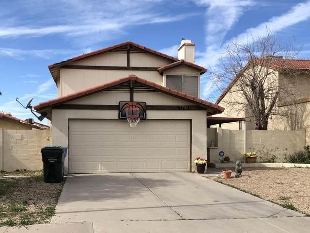 14236 N 50TH Drive, Glendale, AZ 85306 (MLS #6033482) :: The W Group