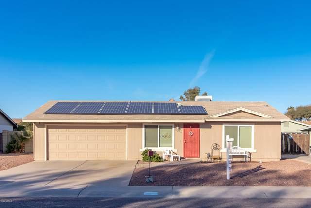 3540 E Helena Drive, Phoenix, AZ 85032 (MLS #6033485) :: Yost Realty Group at RE/MAX Casa Grande
