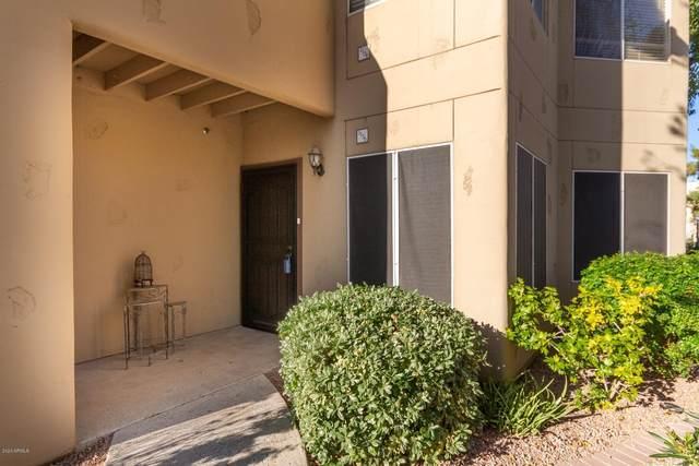 1825 W Ray Road #1136, Chandler, AZ 85224 (MLS #6033523) :: Yost Realty Group at RE/MAX Casa Grande
