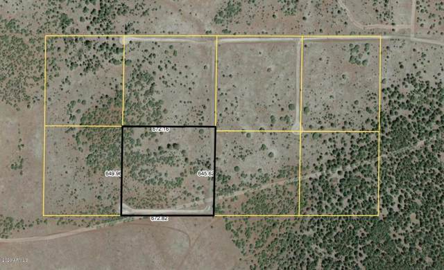 Lot 4 Red Cabin Ranch, Vernon, AZ 85940 (MLS #6033544) :: Arizona 1 Real Estate Team