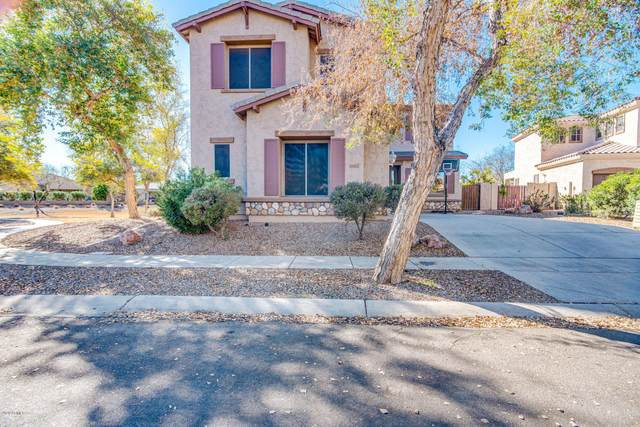 4564 S Maverick Court, Gilbert, AZ 85297 (MLS #6033578) :: BIG Helper Realty Group at EXP Realty