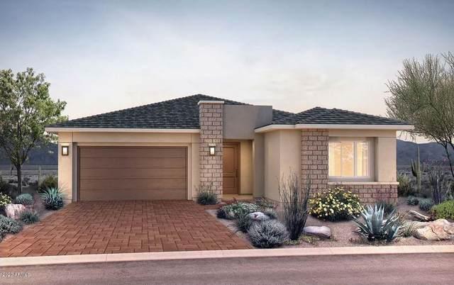 2827 E Donald Drive, Phoenix, AZ 85050 (MLS #6033588) :: Kepple Real Estate Group
