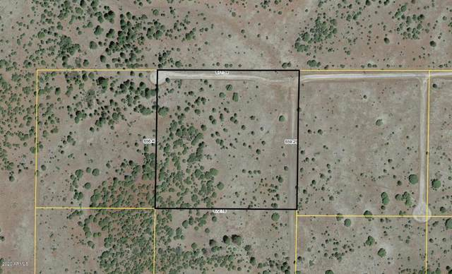 Lot 3 Red Cabin Ranch, Vernon, AZ 85940 (MLS #6033602) :: Arizona 1 Real Estate Team