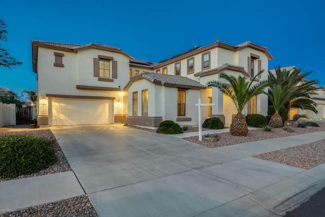 13644 W Calavar Road, Surprise, AZ 85379 (MLS #6033649) :: Conway Real Estate