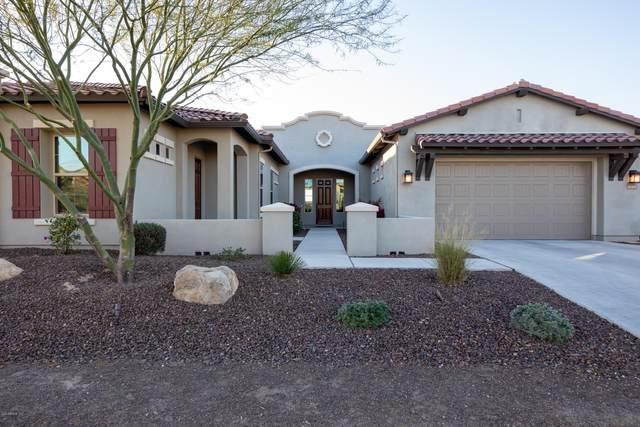 30308 N 117TH Drive, Peoria, AZ 85383 (MLS #6033684) :: Nate Martinez Team