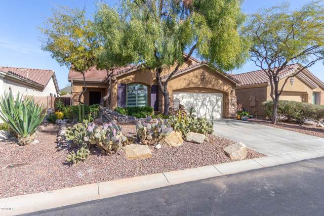 1718 W Dion Drive, Phoenix, AZ 85086 (MLS #6033766) :: Lucido Agency