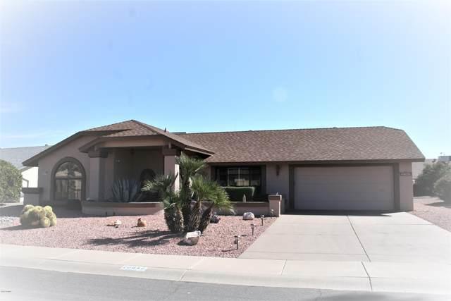 20849 N Gable Hill Drive, Sun City West, AZ 85375 (MLS #6033973) :: My Home Group