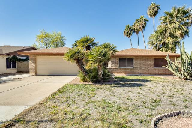 6504 S Butte Avenue, Tempe, AZ 85283 (MLS #6034231) :: Dave Fernandez Team | HomeSmart