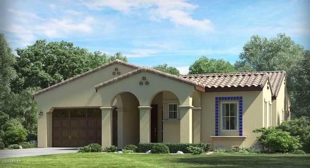 4950 N 207TH Avenue, Buckeye, AZ 85396 (MLS #6034319) :: Arizona Home Group