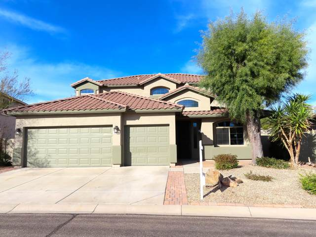 18100 E Via Margarita, Gold Canyon, AZ 85118 (MLS #6034336) :: The Kenny Klaus Team