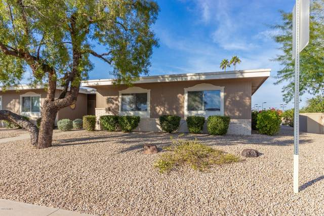 10102 W Hutton Drive, Sun City, AZ 85351 (MLS #6034463) :: Nate Martinez Team