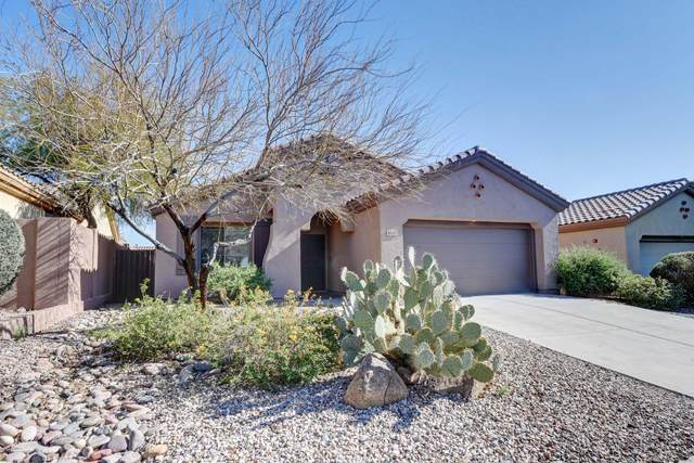 41117 N Prestancia Drive, Anthem, AZ 85086 (MLS #6034485) :: Conway Real Estate