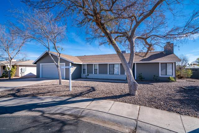 825 N Apache Drive, Chandler, AZ 85224 (MLS #6034520) :: The Kenny Klaus Team