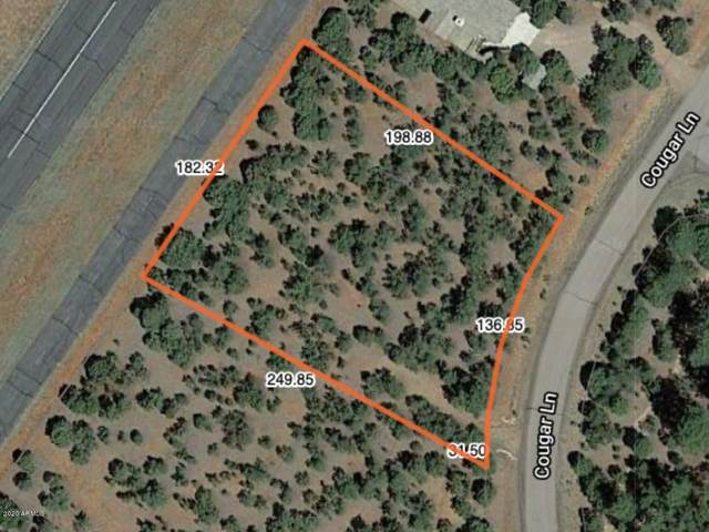 2806 Cougar Lane, Overgaard, AZ 85933 (MLS #6034534) :: Openshaw Real Estate Group in partnership with The Jesse Herfel Real Estate Group