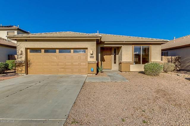 256 S 124TH Avenue, Avondale, AZ 85323 (MLS #6034631) :: The Daniel Montez Real Estate Group