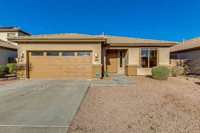256 S 124TH Avenue, Avondale, AZ 85323 (MLS #6034631) :: Devor Real Estate Associates