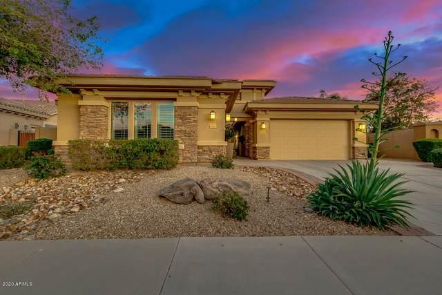 2281 N 156TH Drive, Goodyear, AZ 85395 (MLS #6034636) :: REMAX Professionals