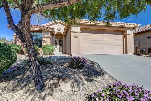 43016 N Challenger Trail, Anthem, AZ 85086 (MLS #6034647) :: Revelation Real Estate