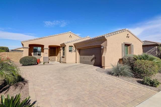 14344 W Almeria Road, Goodyear, AZ 85395 (MLS #6034652) :: Conway Real Estate