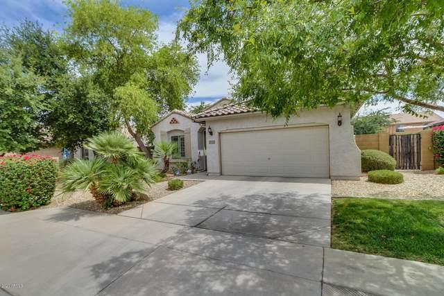 18257 W Townley Avenue, Waddell, AZ 85355 (MLS #6034668) :: Sheli Stoddart Team | M.A.Z. Realty Professionals