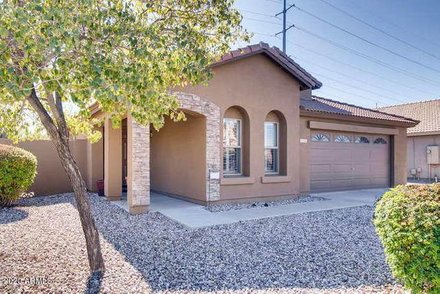 1945 E Aloe Place, Chandler, AZ 85286 (MLS #6034777) :: Devor Real Estate Associates