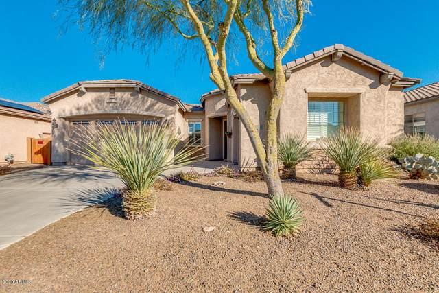 20289 N 259TH Avenue, Buckeye, AZ 85396 (MLS #6034898) :: The Garcia Group