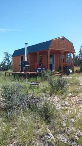 Lot 1567 Lion Canyon Ranch Road, Seligman, AZ 86337 (MLS #6034936) :: Brett Tanner Home Selling Team