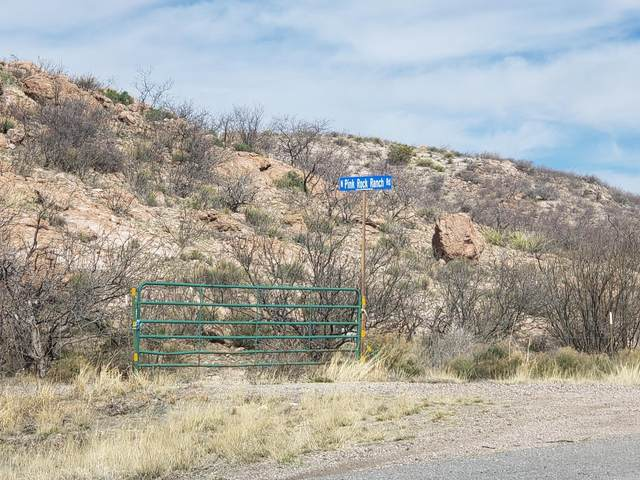 3960 E Blue Sky Way, Douglas, AZ 85067 (MLS #6035084) :: Cindy & Co at My Home Group