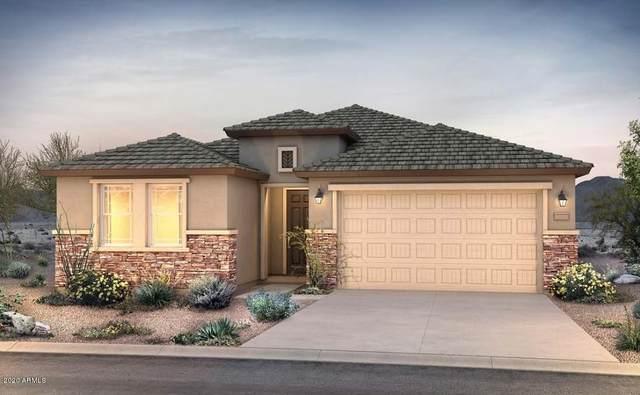 25821 N 161ST Drive, Surprise, AZ 85387 (MLS #6035254) :: Sheli Stoddart Team | M.A.Z. Realty Professionals