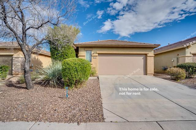 1816 W Owens Way, Anthem, AZ 85086 (MLS #6035295) :: Conway Real Estate